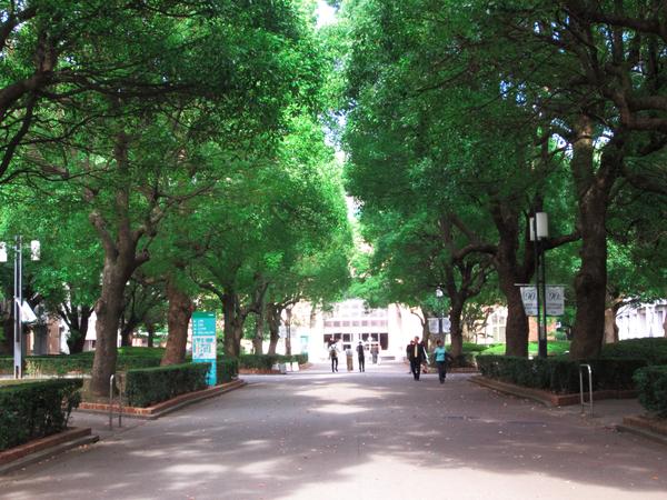 キャンパスR01.jpg