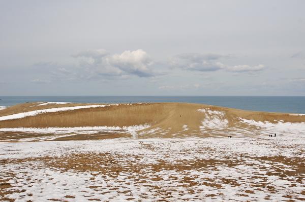 鳥取砂丘馬の背R01.jpg